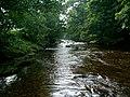 River Cover - geograph.org.uk - 1757865.jpg