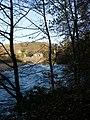 River Swale near Easby Abbey - geograph.org.uk - 1047501.jpg