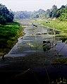 River in Bangladesh 1.jpg
