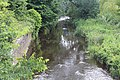 Rivière Water Leith Édimbourg 2.jpg