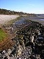 Rock slab, Far Arnside beach - geograph.org.uk - 1616509.jpg