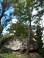 Rocky outcrop in a garden, Szamado Street, 2016 Gellerthegy.jpg