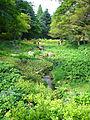Rokko alpine botanical garden04s2816.jpg
