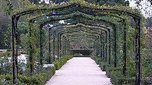 Buen Retiro Park - Rosaleda (rose-garden)