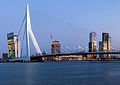 RotterdamMaasNederland (2).jpg