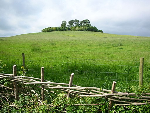 Round Hill, Wittenham Clumps
