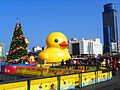 Rubber Duck and Maritime Plaza 20140107a.jpg