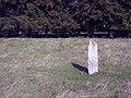 Rubbing Stone - geograph.org.uk - 1484648.jpg