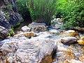 Ruisseau des singes 03.jpg