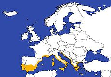 This map shows the areas of Europe with mediterranean climates.