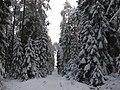 Salako sen., Lithuania - panoramio (136).jpg