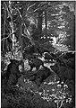 Salgari - L'Uomo di fuoco (page 71 crop).jpg