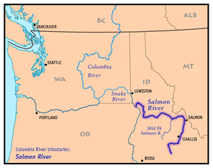 Salmon River (Idaho) - Wikipedia on sawtooth national recreation area, clearwater river, bruneau river idaho map, wallace idaho map, coeur d'alene, kootenay river, selway river map, clearwater river idaho map, idaho county map, salt river, detailed idaho road map, the river wild, salmon id, sawtooth range, middle fork salmon river, idaho lakes map, clark fork, lewiston idaho map, pend oreille river, deep creek idaho map, rivers in idaho on map, idaho back road map, boise idaho map, hells canyon idaho map, lake pend oreille, coeur d'alene idaho map, snake river, borah peak, spokane river, clark fork river idaho map, idaho falls, salmon idaho map google, devils creek idaho map, idaho highway map, columbia river map, hells canyon,