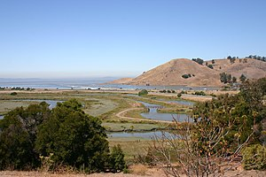Coyote Hills Regional Park - Image: Salt marsh, Coyote Hills