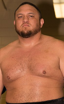 Samoa Joe at Smash 2015.2.jpg