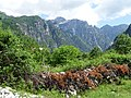 Scenery at Theth Village - Northern Albania - 03 (42688931192).jpg