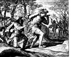 Schnorr von Carolsfeld Bibel in Bildern 1860 058
