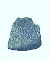 Seal of Bhaskar Varman Found at Nalanda dated 643 A.D.jpg