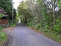 Sealstown Road - geograph.org.uk - 1536261.jpg