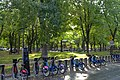 Section Est du parc Molson.jpg