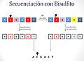 Secuenciación con bisulfito.jpg