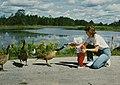 Seney National Wildlife Refuge - 1987 (5404453063).jpg