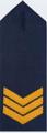 Sergeant TASPOL.png