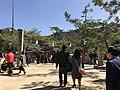 Shimmon Gate of Itsukushima Shrine.jpg