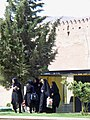 Shiraz, Iran (28594903591).jpg