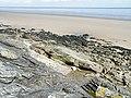 Shore near Arbigland - geograph.org.uk - 1393433.jpg