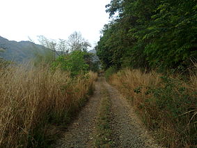 Silent Valley National Park 013.jpg