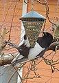 Skata Common Magpie (13328922225).jpg
