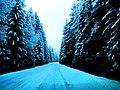Sneh Podbanské 17 Slovensko7.jpg