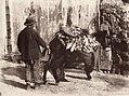 Sommer, Giorgio (1834-1914) - n. 6143 - Donkey driver in Naples.jpg