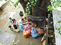 Somvati Amavasya Vrat (सोमवती अमावस्या व्रत ).jpg