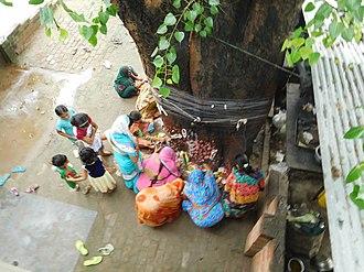 Amavasya - Somvati Amavasya Vrat (सोमवती अमावस्या व्रत )
