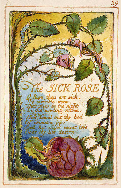 File:Songs of Innocence and of Experience copy AA object 39 The SICK ROSE.jpg