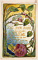 Songs of Innocence and of Experience copy AA object 39 The SICK ROSE.jpg