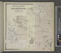 South Woods or the Wilderness in St.lawrence County (Township) NYPL1601909.tiff