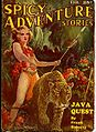 Spicy-Adventure Stories February 1935.jpg