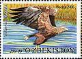 Stamps of Uzbekistan, 2006-116.jpg