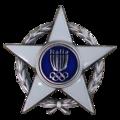 Stella d'argento al Merito Sportivo.png