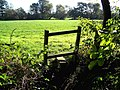 Stile Near Huddlesford - geograph.org.uk - 266209.jpg