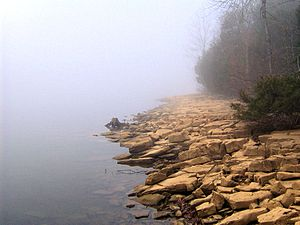 Long Hunter State Park - The shore of J. Percy Priest Lake near Bakers Grove, before the morning fog has lifted