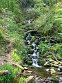 Stream at Gibson's Mill (2501345315).jpg