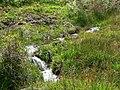 Stream cutting through the peat - geograph.org.uk - 924598.jpg