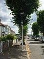 Streetlight in Fairkytes Avenue, Hornchurch - geograph.org.uk - 1991809.jpg