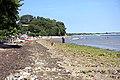 Studland Bay 5.jpg