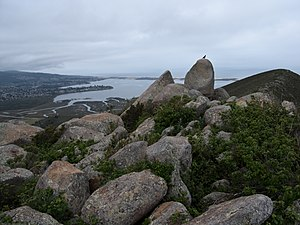Morro Bay State Park - Summit of Cerro Cabrillo and Morro Bay estuary
