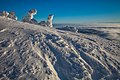 Sun Peaks Ski Resort - more shots amongst the snow ghosts - high on a windswept ridge (13653333605).jpg